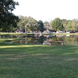 Peaceful pond near playground.