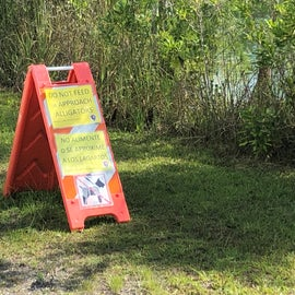 Don't Feed the Gators