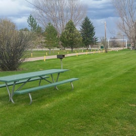 Grassy area for tents