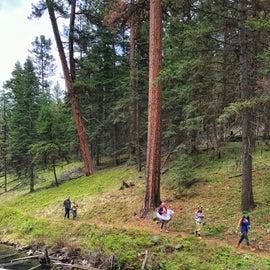 Lakeside trail