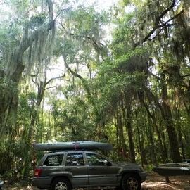 Drive around and pick a primitive site