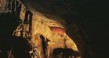 Forestville-Mystery Cave