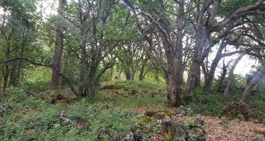 Ja She Creek - Ahjumawi Lava Springs State Park