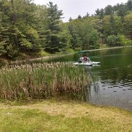 Free paddle boats