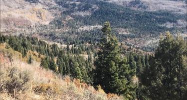 Slate Creek Dispersed Campground
