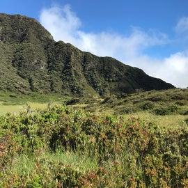 Looking south towards the kuapo gap