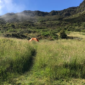 Paths to campsites along grass