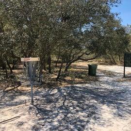 Local disc golf at Kure Beach.