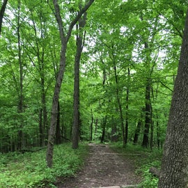 Great hiking trails