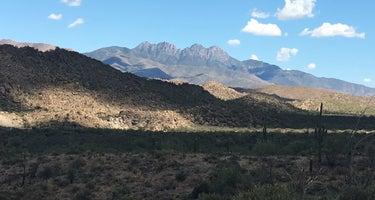 Mesquite Wash Dispersed