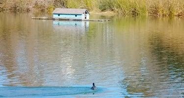 Pinto Lake City Park