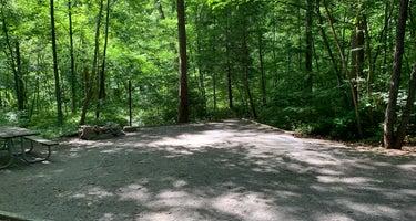 Elizabeth Furnace Recreation Area