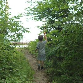Short, flat path from campsite to water's edge