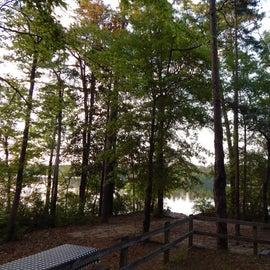 View of lake behind camp site