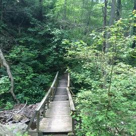 The Copper Mine Trail, heading down to the Delaware River