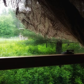 The chicken coop through the window of the cabin