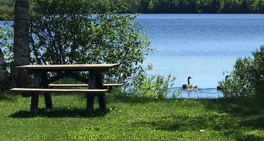 Beaufort Lake State Forest Campground