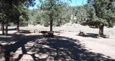 Juniper Springs Group Camp