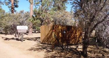 Tanglewood Group Camp