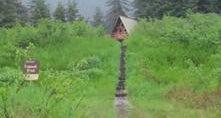 Coghill Lake Cabin