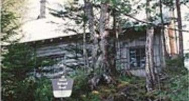 Greentop Cabin
