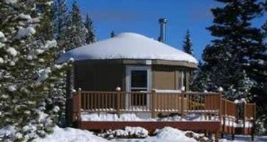 Carter Military Trail Yurt