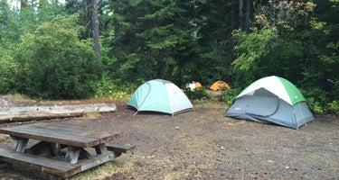 Black Pine Horse Camp