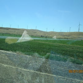 Farm land near Hebron