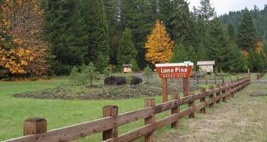 Lone Pine Group Campground