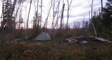 Little Todd Campground