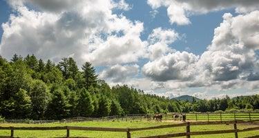 Pucker Ridge Farm
