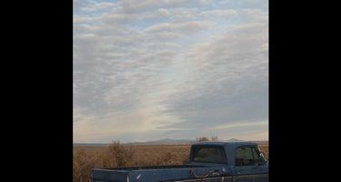 High Desert Outback