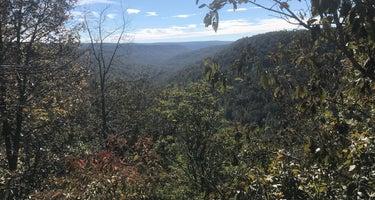Cove Creek Bluff Site