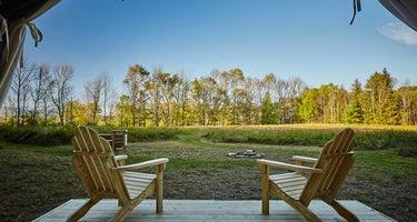 Dogwood Tree Camp