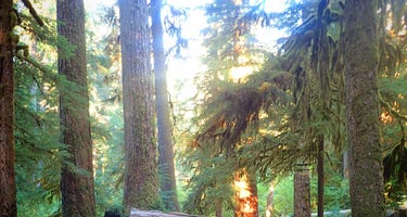 Sol Duc Hot Springs Resort Campground