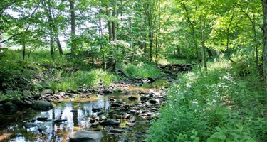 Bearkill Brook