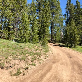 The road in is wide and well maintained until you get near the camp