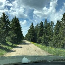 Long road in