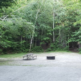 Site 6  Barnes Field