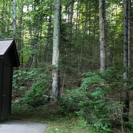 Vault toilets