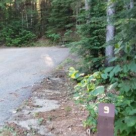 Site 9 Barnes Field