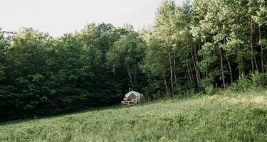 Dry Brook Ridge Meadow