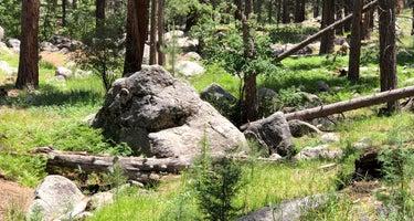 Pine Valley Equestrian Campground