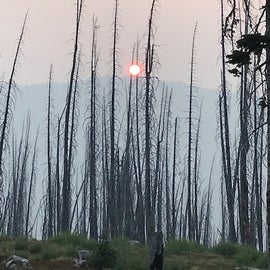 Smoke from wildfires, local and in Canada, 2018