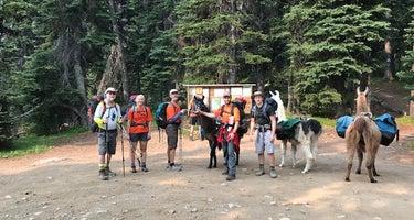Harts Pass Campground
