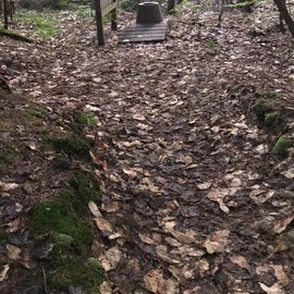 Site includes this primitive toilet about 50ft from the campfire ring, surprisingly more private than it seems!
