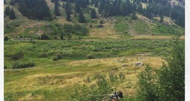 Harrison Lake Montana FWP