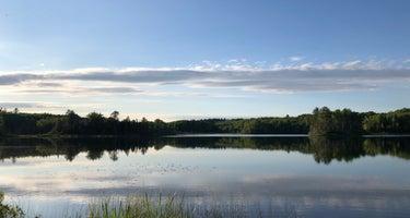 Cookson Lake Dispersed Campsite