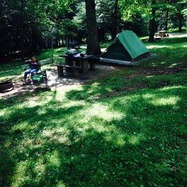 Nice tent site