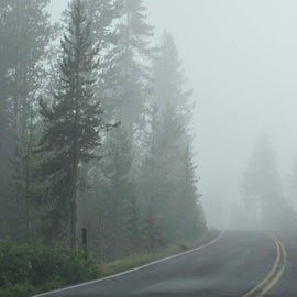 foggy road near the campground